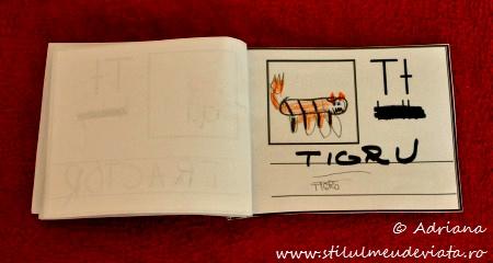 litera T de la TIGRU