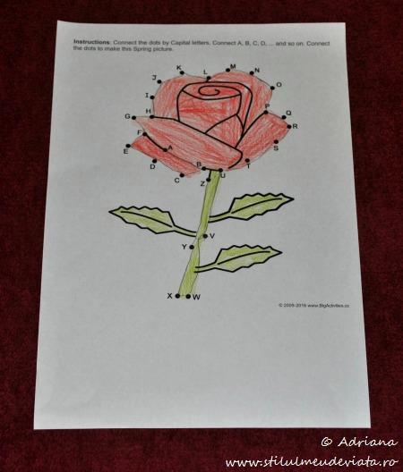 trandafir, fisa punct cu punct