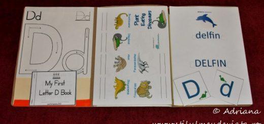 litera D, dosar cu activitati