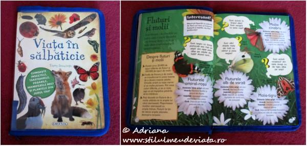 Viata in salbaticie - Fluturi si molii
