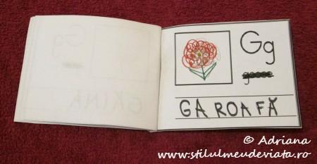 litera G de la GAROAFA