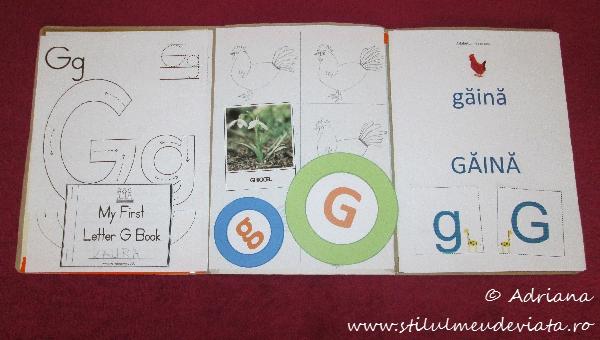 litera G, dosar cu activitati