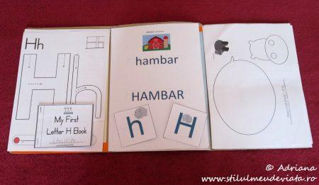 Litera H, dosar cu activități