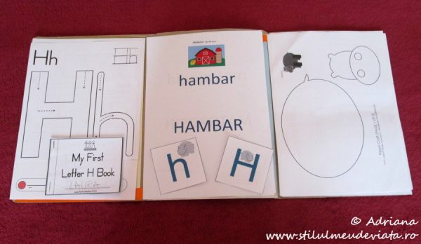 litera H, dosar cu activitati