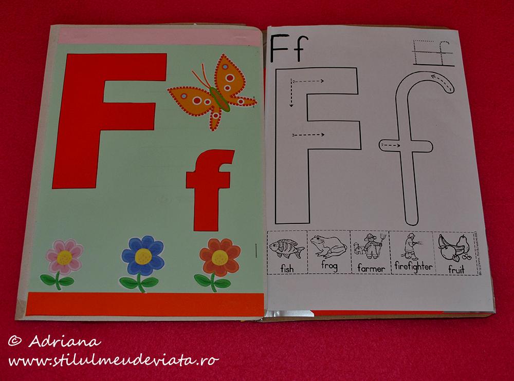 litera f, dosar cu activități