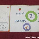 Litera Z, dosar cu activitati