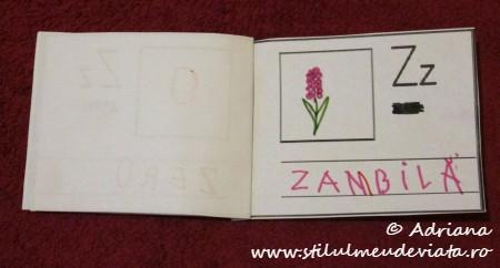litera Z de la ZAMBILA