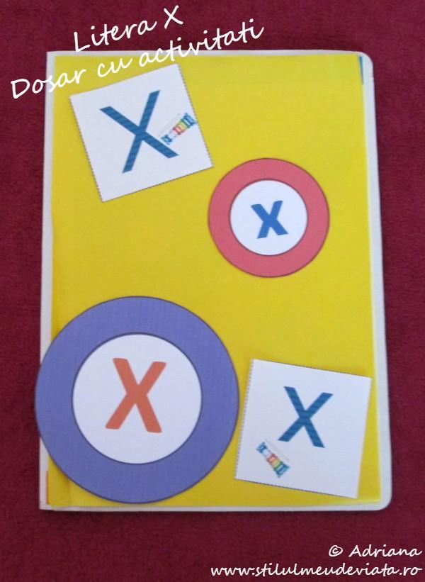 litera x, dosar cu activitati