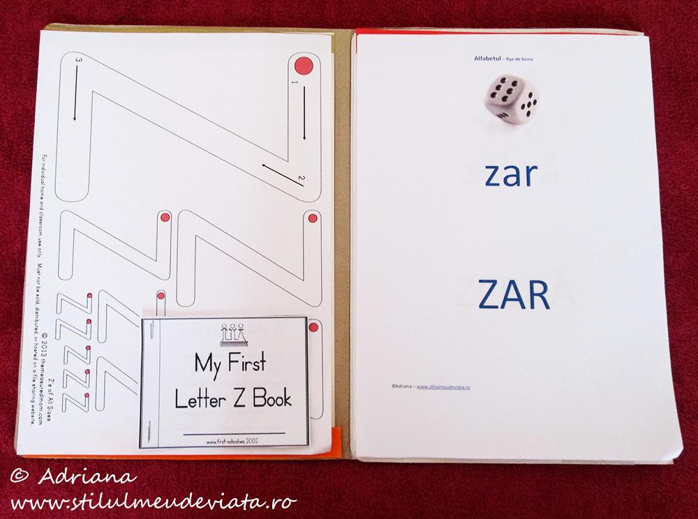 litera z, dosar cu activități