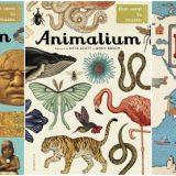 Historium, Animalium, Harti