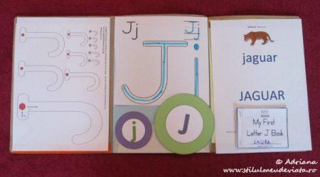 Litera J, dosar cu activități