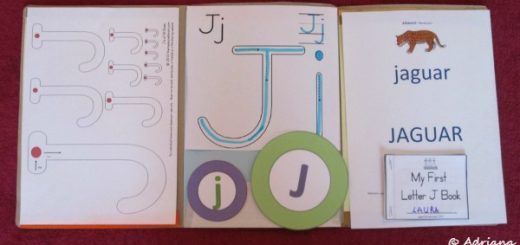 Litera J, dosar cu activitati