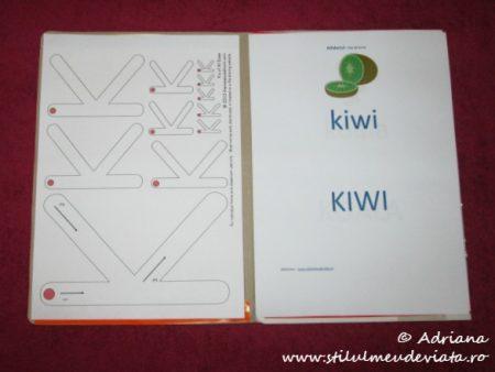 Litera K, Dosar cu activitati