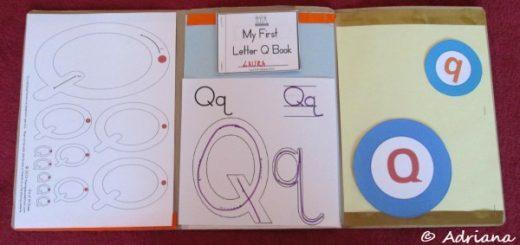Litera Q, dosar cu activitati