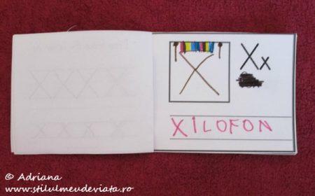 X de la XILOFON