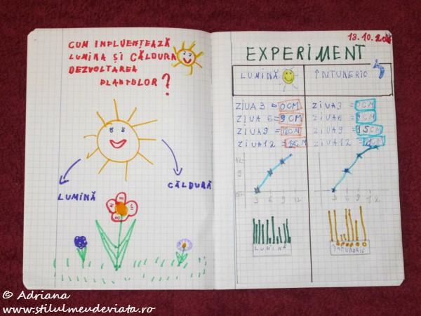 Experiment, soarele si dezvoltarea plantelor de grau, caiet de experimente