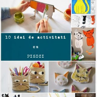 idei de activitati cu pisici
