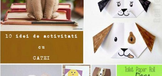 idei de activitati practice cu CATEI