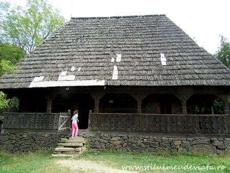 Casa Ilea, Călinești, Valea Cosăului
