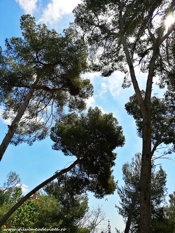 papagali în Park Guell
