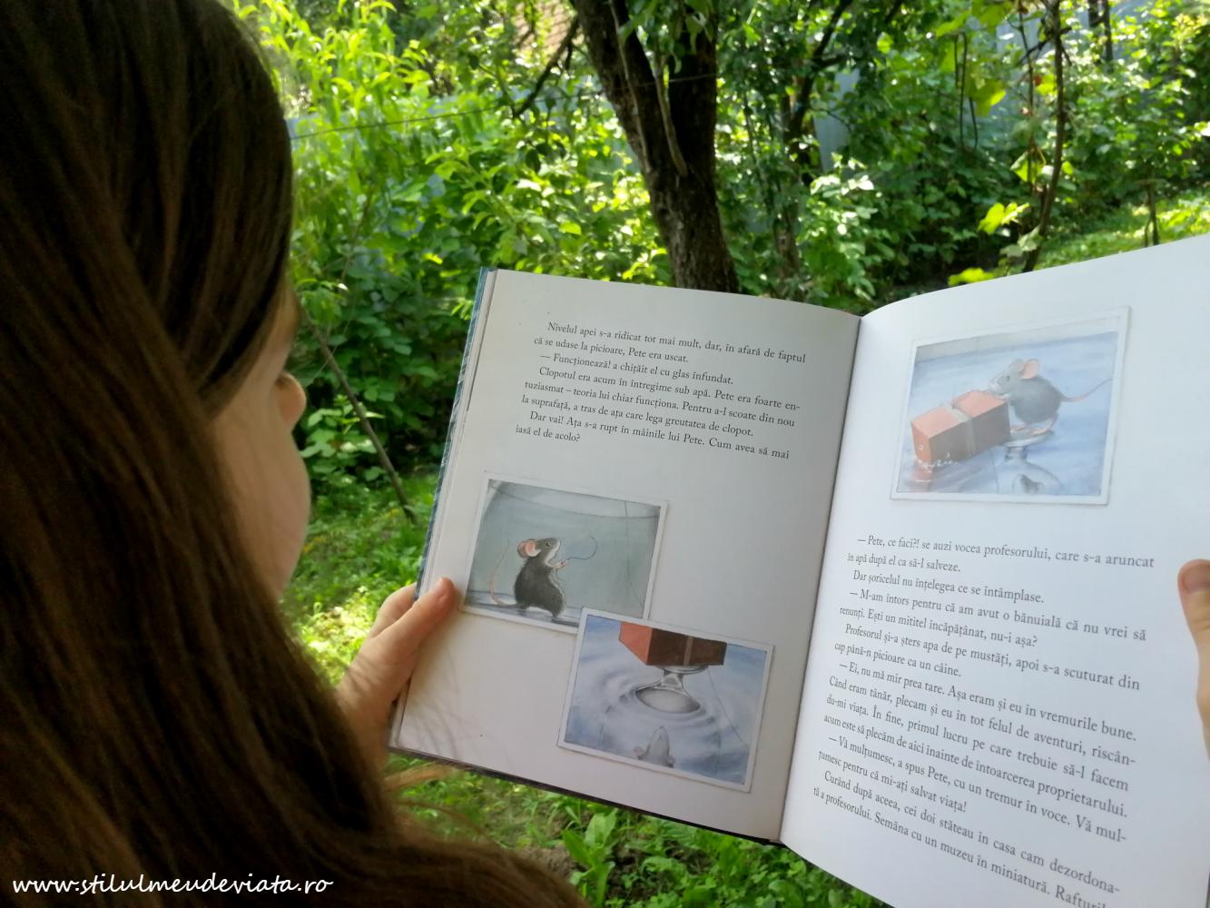Ce cărți am citit în vacanța de vară, clasa a iii-a