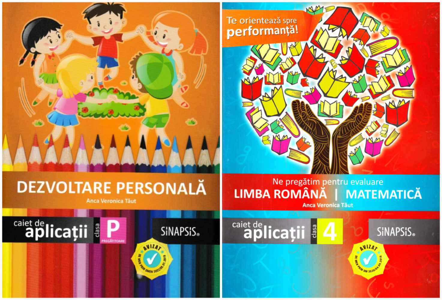 Auxiliare curriculare, Anca V Taut